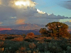 La Sal Mountains From Arches NP (Fort Photo) Tags: travel sunset nature landscape utah nikon 2006 moab aspen lasalmountains nikon4500 interestingness68 specnature abigfave bestnaturetnc06