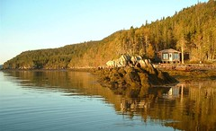Calm Cabin Sunrise (Mark Veitch) Tags: ocean blue trees windows sea sky brown black green water rock tag3 taggedout sunrise fence newfoundland bay cabin tag2 tag1 flat peaceful calm clear shore ripples placentiabay