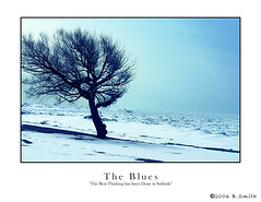 tree beach goderich blues (RedRhino_flickr) Tags: winter canada lakehuron sexonthebeach goderich catchycolorsblue coldforathong goderichontario gdci gdci1982