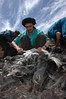 Shaving a goat in Morocco (noregt) Tags: wool clouds angle wide goat scissors goats shaving maroc cutting tamtatouche truband