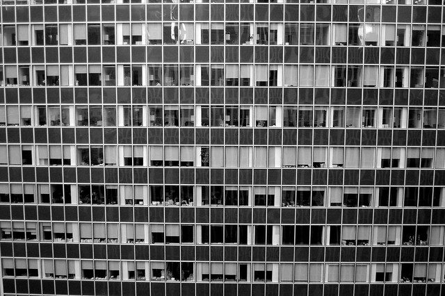 A Sea of Windows