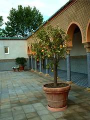 orientalgarden060604 (maxie-online) Tags: berlin oriental gardensoftheworld marzahn