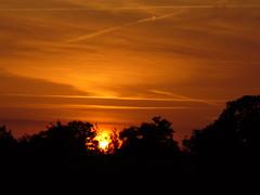 Orange dreams (carola's look) Tags: sunset orange carola fcsetsrises