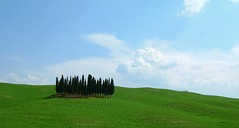 Candles ([ chang ]) Tags: trees italy panorama tree verde green field alberi skyscape candles italia campagna tuscany finepix fields fujifilm siena toscana 1on1 wwwriccardoromanocom