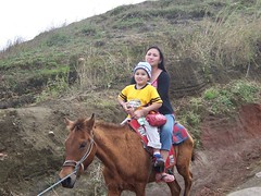 Philippines December 2005 (Larry Buerkle) Tags: volcano ride pears philippines hourse remigio luvis