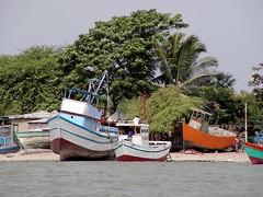 Puerto Pizarro, Tumbes, Peru (Jose Alarco) Tags: peru tumbes peruvianimages
