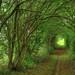 path - by purefinder