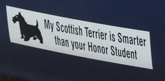 Terrier Bumper Sticker (bmw328driver) Tags: usa dog minnesota topv111 nikon funny downtown humor minneapolis loveit terrier bumpersticker d200 mn