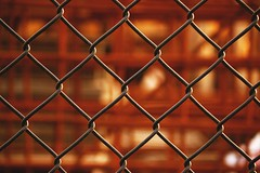 Intertwined II (m4r00n3d) Tags: abstract fence nikon edinburgh nikond50 nikkor intertwinded