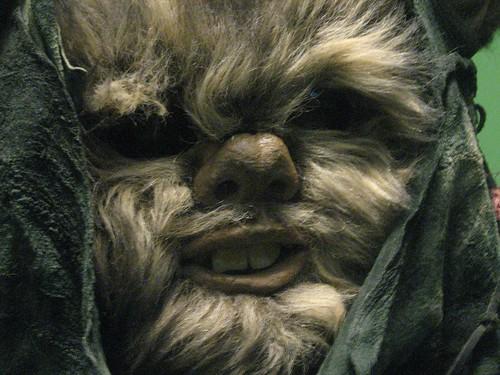 Star Wars Ewok Pictures. Ewok