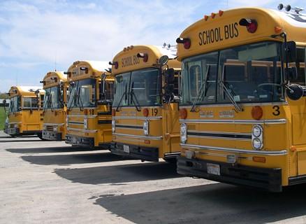 School Bus'