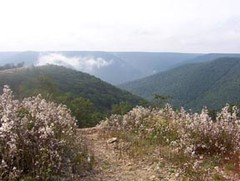 Overlook off Mason Hill (irish blue eyes) Tags: camp cloud mountain landscape overlook driftwoodpa masonhill