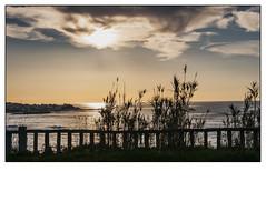 Portosin (Jose Losada Foto) Tags: arboles cielo ciudadesypueblos deplaya fotografia galicia joselosada lugares mar mirador naturaleza nikon nikond90 nubes paisajes plantas playa rãamurosnoia excursión acoruña españa montaña ría ríamurosnoia