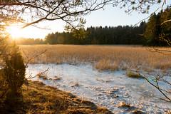 December sun (JarkkoS) Tags: 2470mmf28eedafsvr bright d800 espoo finland landscape sky sun suvisaaristo winter esbo uusimaa fi