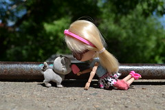 Paskuda- Blythe (pe.kalina) Tags: cat doll blythe petshop petite lps paskuda