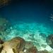 Águas azuis e cristalinas