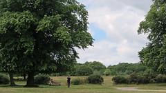 Sutton Park Picnic Time (zoekay) Tags: park people nature birmingham picnic suttoncoldfield suttonpark outsidespaces