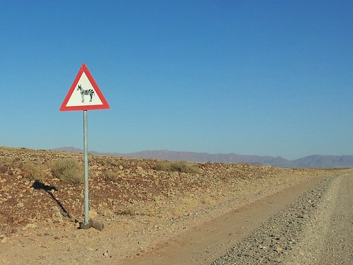 Attention aux zèbres, Namibie