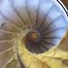Escalera del Campanario de la Santa e Insigne Catedral Magistral de Alcala de Henares