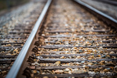 Railroad Tracks (AP Imagery) Tags: rr bokeh depthoffield railroad rails traintracks kentucky usa