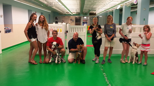 "Obedience 1, Session F, Summer 2015-Tues; Class Photo • <a style=""font-size:0.8em;"" href=""http://www.flickr.com/photos/65918608@N08/20375722911/"" target=""_blank"">View on Flickr</a>"