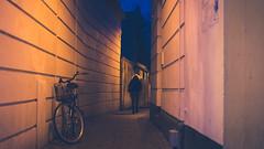Aarhus Nights-6 (cohenvandervelde) Tags: 35mm 365project 550d apsc aarhus city cohenvandervelde creativecommons dof denmark scene scout snap souls worldstreetphotography blue canon color colour depthoffield gold lights people primelens purple silhouette street streetphotography streettog sunset tunnel