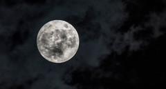 Full Moon (cuppyuppycake) Tags: january moon fullmoon sky night nikon d7200