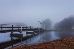 Bridge (koolbram) Tags: bridge brug fog mist foggy mistig dawn zonsopkomst white water rotterdam berkel delfgauw delft outdoor trees nikon d90 tokina 1116mm nederland netherlands holland europe europa zuidholland zuid benelux rijnmond