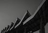 Pazardzhik Bus Station (widmerstefan) Tags: bulgarien bulgaria pasardschik pazardzhik busstation busbahnhof roof dach bw noiretblanc schwarzweiss monochrome monochrom blackandwhite sw mediumformat mittelformat ilforddelta100 filmphotography analog 120 rodinal 6x9 fujicagw690