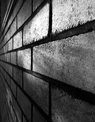 Goleuni annisgwyl (Rhisiart Hincks) Tags: balla wal horma moger wall mur sklêrijenn goleuni lumière light argi solas briciau bric brik brick duagwyn gwennhadu dubhagusgeal dubhagusbán zuribeltz czarnobiałe blancinegre blancetnoir blancoynegro blackandwhite 黒と白 zwartenwit mustajavalkoinen crnoibelo černáabílá schwarzundweis اسودوابيض، bw feketefehér melnsunbalts juodairbalta negrușialb siyahvebeyaz črnoinbelo черноеибелое чорнийібілий