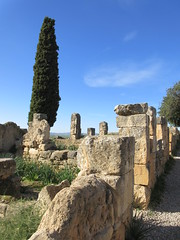 Ruined walls with tree and blue sky, Volubilis, Morocco (Paul McClure DC) Tags: morocco almaghrib fèsmeknèsregion volubilis jan2017 roman architecture historic