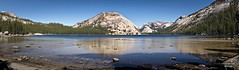 Tenaya Lake | Polly Dome | Yosemite NP (Bill Lim) Tags: national park trees lake water sky blue granite rock dome shore hiking yosemite polly yosemitenationalpark ca unitedstatesofamerica panorama olympus e30 zd zuikodigital 1454mm zuiko