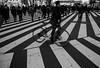 crosswalk (N.sino) Tags: m9 biogon28mm shinjuku crosswalk 新宿 歌舞伎町 横断歩道 自転車 stripe