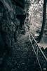 (lotl.axo) Tags: deutschland sachsen herbst reisefotografie wasser landschaft liebethalergrund fluss schwarzweis schlucht natur sächsischeschweiz elbsandsteingebirge germany autumn bw blackandwhite gorge landscape monochrome nature ravine river sw travelphotography water