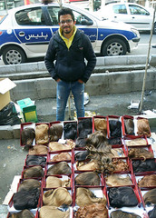 Hamid, The Hairpiece Seller (Kombizz) Tags: 0739 kombizz tehran iran 1394 2016 hamid thehairpieceseller hamidthehairpieceseller hairpieceseller youngman tajrish policecar