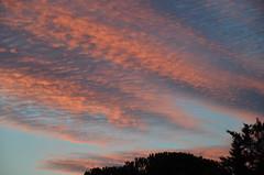 Sunset (dfromonteil) Tags: coucher soleil sunset sky ciel clouds nuages silhouette colors couleurs bleu blue orange rose nature