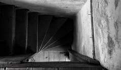 Downstairs, ca1820 (ariel is . . .) Tags: virginia va vernacular summerkitchen inside lookingdown stairs staircase 1820s early1800s empty abandoned ruraldecay blackandwhite cmwdbw stonebuilding 2ndfloor