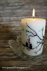 SanValentinoCandela_005w (Morgana209) Tags: sanvalentino love candele candle amore innamorarsi pastelliacera handmade riciclocreativo stvalentin creatività gattini mici cuori heart sperimentare fuoco