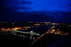 Budapest Cityscape (hattiebella) Tags: city bridge blue sky reflection water night river liberty lights long exposure cityscape budapest nighttime riverbank danube buda waterside pest citadella gelert blindphotographer visuallyimpairedphotographer viphotography hattiehall