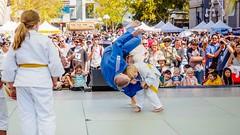 Japan Festival Perth 2015