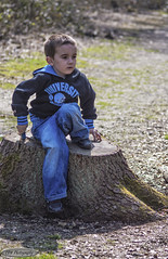 Riley On Stump (Chrisisinuk) Tags: shadow summer sunshine pose sitting child stump relaxed