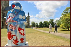 No.3 Best of British (Anthony Bush) Tags: people tree cathedral tea teapot salisbury wiltshire sandcastle carta salisburycathedral redarrows redwhiteblue baron magna parkland bestofbritish canon70d trusselltrust chartertrail