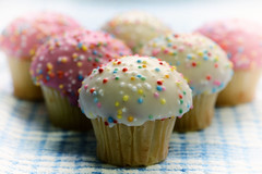 Picnic (PhotosbyDi) Tags: cakes cupcakes picnic nikond600 macromondays tamronf2890mmmacrolens