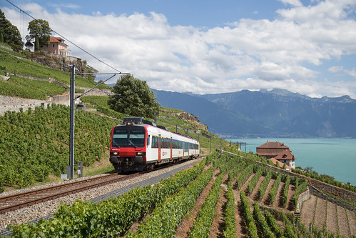"SBB RBDe 560 Domino als ""train des vignes"" kurz vor Chexbres-Village"