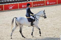 IMG_2207 (dreiwn) Tags: horse horseshow equestrian horseback reiten horseriding showjumping gelnde eventing marbach reitturnier vielseitigkeit reitsport pferdekopf pferdesport springreiten reitplatz gelndestrecke eventingmarbach