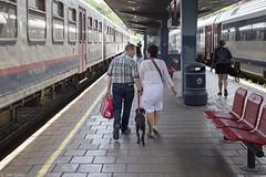 Hand in hand in Huy (Tim Boric) Tags: dog station train walking gare perron platform zug bahnhof hond bahn lopen railways quai huy trein bahnsteig spoorwegen handinhand hoei
