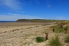 (Earlybird_) Tags: dunnetbay dunnet scotland trip wanderlust beach ocean sea coast cliff love