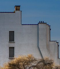 The last tress (jefvandenhoute) Tags: belgium belgië belgique brussels brussel bruxelles light shapes sony rx10