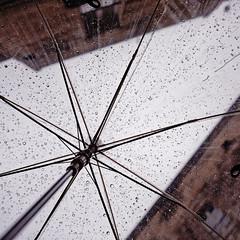 Under my Umbrella ©2017 Nicola Nigri (Lifeinpicture) Tags: umbrella drops rain cloudy detail raindrops matera italy nopeople winter nikond750 nikkor perspective
