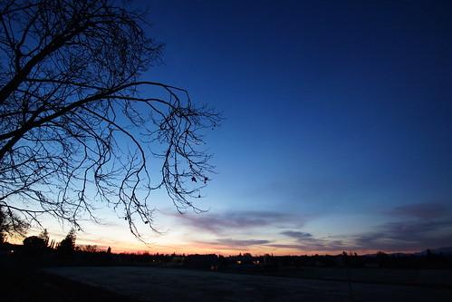 2017-01-30 Morning Sunrise - Week 5 [#3]